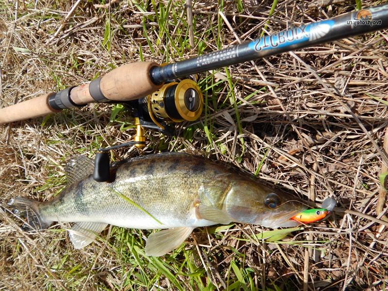 катушки рыбалка в севастополе